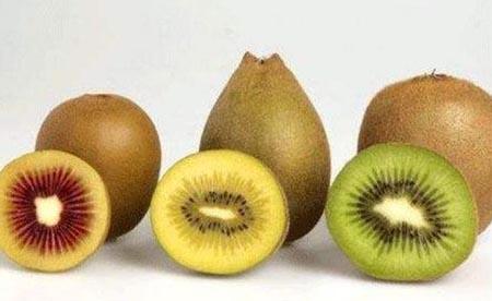 猕猴桃的吃法禁忌_猕猴桃不能和哪些食物一起吃