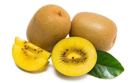 红心、黄心、绿心,不同颜色的猕猴桃,哪个品种的最好吃