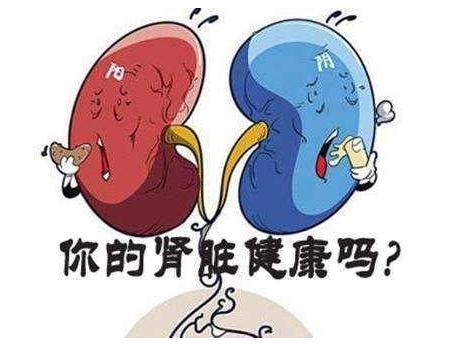 六味地黄丸的功效作用 肾阴虚和肾阳虚的区别