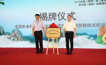 """【喜讯】西峡猕猴桃获""""中国最受欢迎的猕猴桃区域公用品牌"""""""